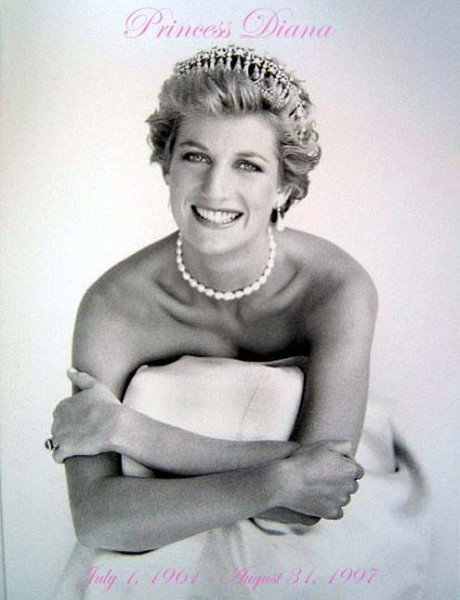 princess diana wedding pictures. princess diana wedding dress tour. princess diana wedding dress