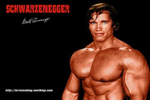 arnold schwarzenegger chest routine