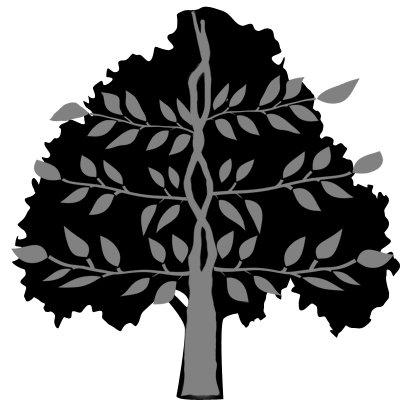 family health tree. family health tree template. family tree template for mac.